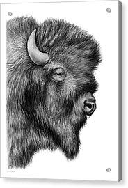 American Bison Acrylic Print by Greg Joens