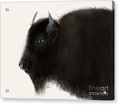 Acrylic Print featuring the painting American Buffalo by Bri B