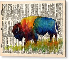 American Buffalo IIi On Vintage Dictionary Acrylic Print by Hailey E Herrera