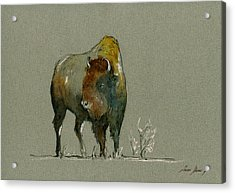 American Buffalo Acrylic Print by Juan  Bosco