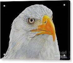 American Eagle Acrylic Print by Bill Richards