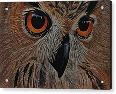 American Eagle Owl Acrylic Print by Jo Baner