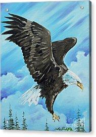 American Flight Acrylic Print by Joseph Palotas