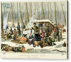 American Forest Scene Maple Sugaring Acrylic Print