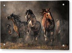 American Paint Horses Acrylic Print