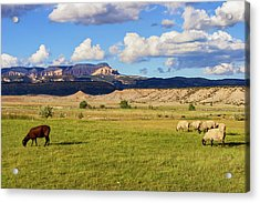 American Pastoral Acrylic Print by Arthur Dodd