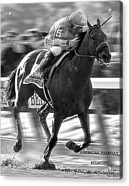 American Pharoah And Victor Espinoza Win The 2015 Belmont Stakes Acrylic Print