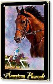 American Pharoah Framed Acrylic Print
