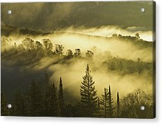 American River Canyon In The Fog Acrylic Print
