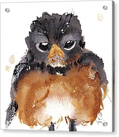 Acrylic Print featuring the painting American Robin by Dawn Derman