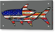 American Tarpon Acrylic Print by Michael Garber