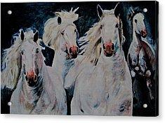 American White Acrylic Print