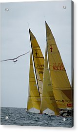 America's Cup Race Acrylic Print by Carl Purcell