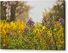 Amethyst And Golden Rod Acrylic Print by JAMART Photography