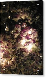 Amethyst Acrylic Print by Jez C Self