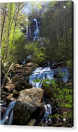 Amicalola Falls Acrylic Print by Dan Wells