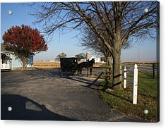 Amish 4 Acrylic Print by Eric Irion