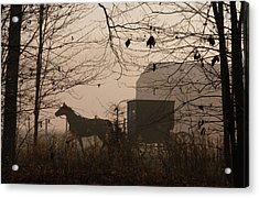 Amish Buggy Fall Acrylic Print