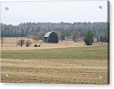 Acrylic Print featuring the photograph Amish Country 0754 by Michael Peychich