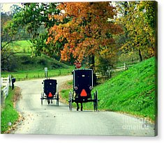 Amish Country In Autumn Ohio Holmes County Acrylic Print by Charlene Cox