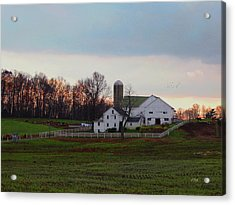 Amish Farm At Dusk Acrylic Print by Gordon Beck