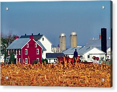 Amish Farm Acrylic Print by Thomas R Fletcher