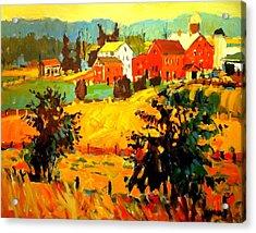 Amish Farms Acrylic Print by Brian Simons
