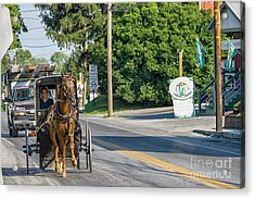 Acrylic Print featuring the photograph Amish Girl On The Road by Patricia Hofmeester