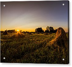Acrylic Print featuring the photograph Amish Harvest by Chris Bordeleau