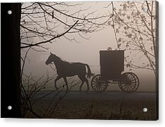 Amish Morning 1 Acrylic Print