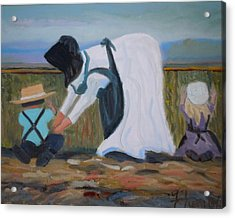 Amish Picking Peas Acrylic Print by Francine Frank