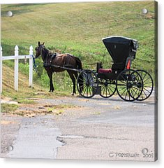 Amish Transportation Acrylic Print