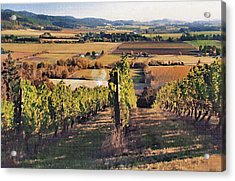 Amity Vineyard And Farmlands Acrylic Print