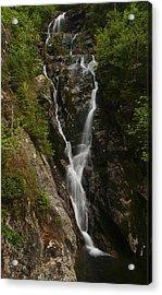 Ammonoosuc Ravine Falls Acrylic Print