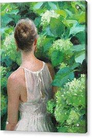 Among The Hydrangeas Study  Acrylic Print by Anna Rose Bain