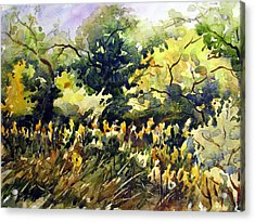 Amongst The Goldenrods Acrylic Print by Chito Gonzaga