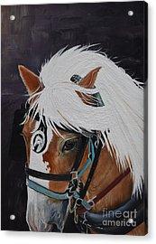 Amos - Haflinger - Horse Acrylic Print