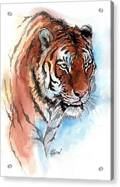 Amur Tiger Acrylic Print by Christine Karron