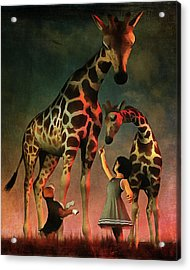 Amy And Buddy With The Giraffes Acrylic Print