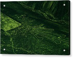 An Aerial View Of The Nazca Lines. They Acrylic Print by Bates Littlehales