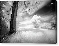 An Afternoon With My Daughter Acrylic Print