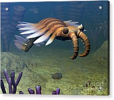 An Anomalocaris Explores A Middle Acrylic Print by Walter Myers