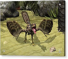 An Archaeopteryx Depicted Acrylic Print by Walter Myers