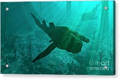 An Armored Bothriolepis Glides Acrylic Print by Walter Myers