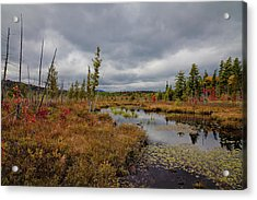 Acrylic Print featuring the photograph An Autumn Afternoon On Raquette Lake by David Patterson