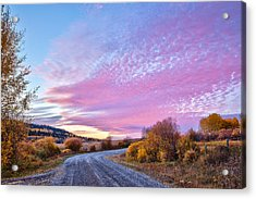 An Autumn Country Road Acrylic Print by Tomas Nevesely