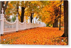 An Autumn Stroll - West Bennington Vermont Acrylic Print by Expressive Landscapes Fine Art Photography by Thom