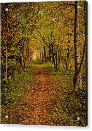 An Autumn's Walk Acrylic Print