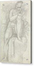 An Hermaphrodite Acrylic Print