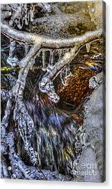 An Icy Creek Acrylic Print by Veikko Suikkanen